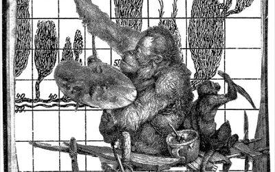 Jenseits des Paradieses – das Tierbild in alten und neuen Medien